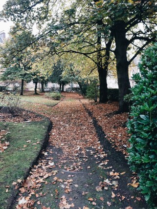 My Week in Pictures Glasgow