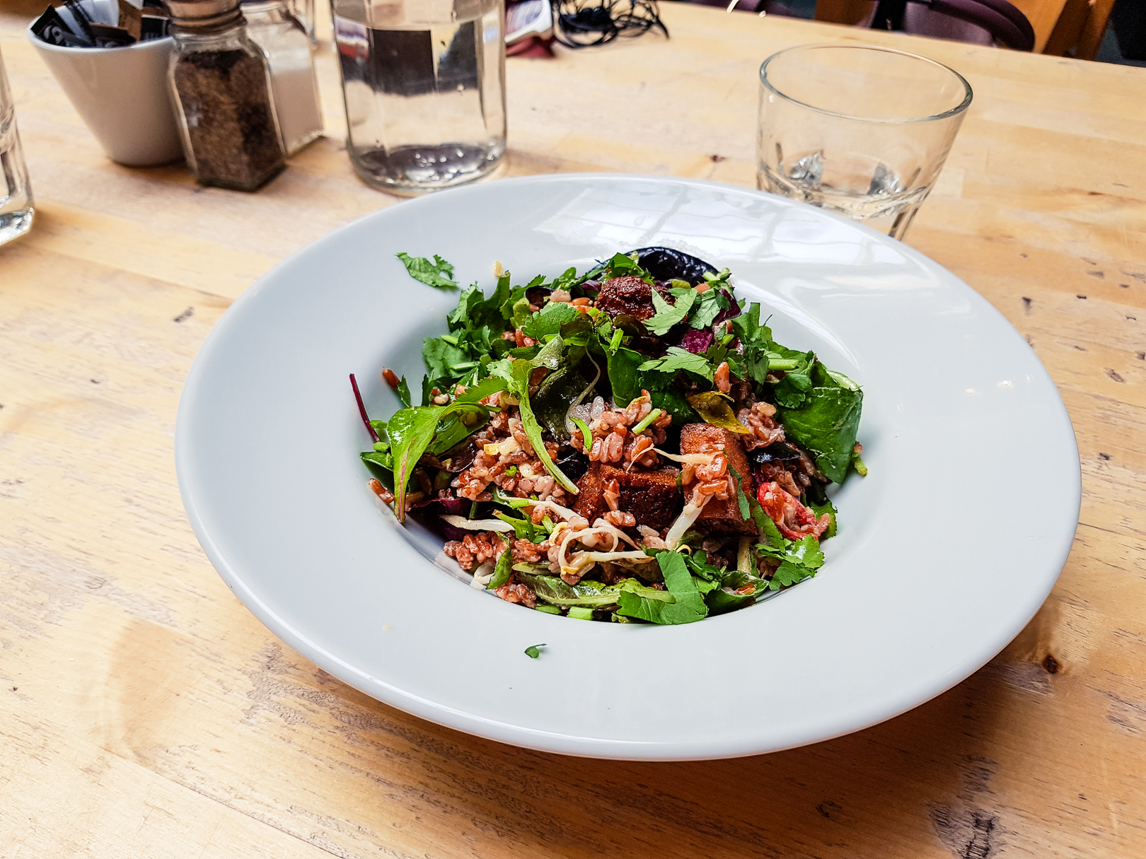 Wild rice and tofu salad at the Saramago Cafe Bar at the CCA in Glasgow.