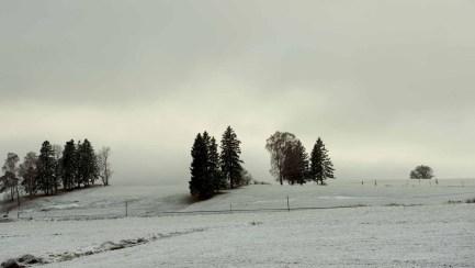 Winterlandschaft, Hopfen am See 1