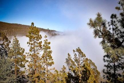 Der Teide im Nebel (Wolken) - Teide Nationalpark 1