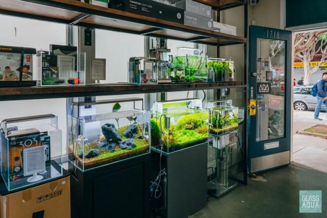 Aqua Forest Aquarium San Francisco