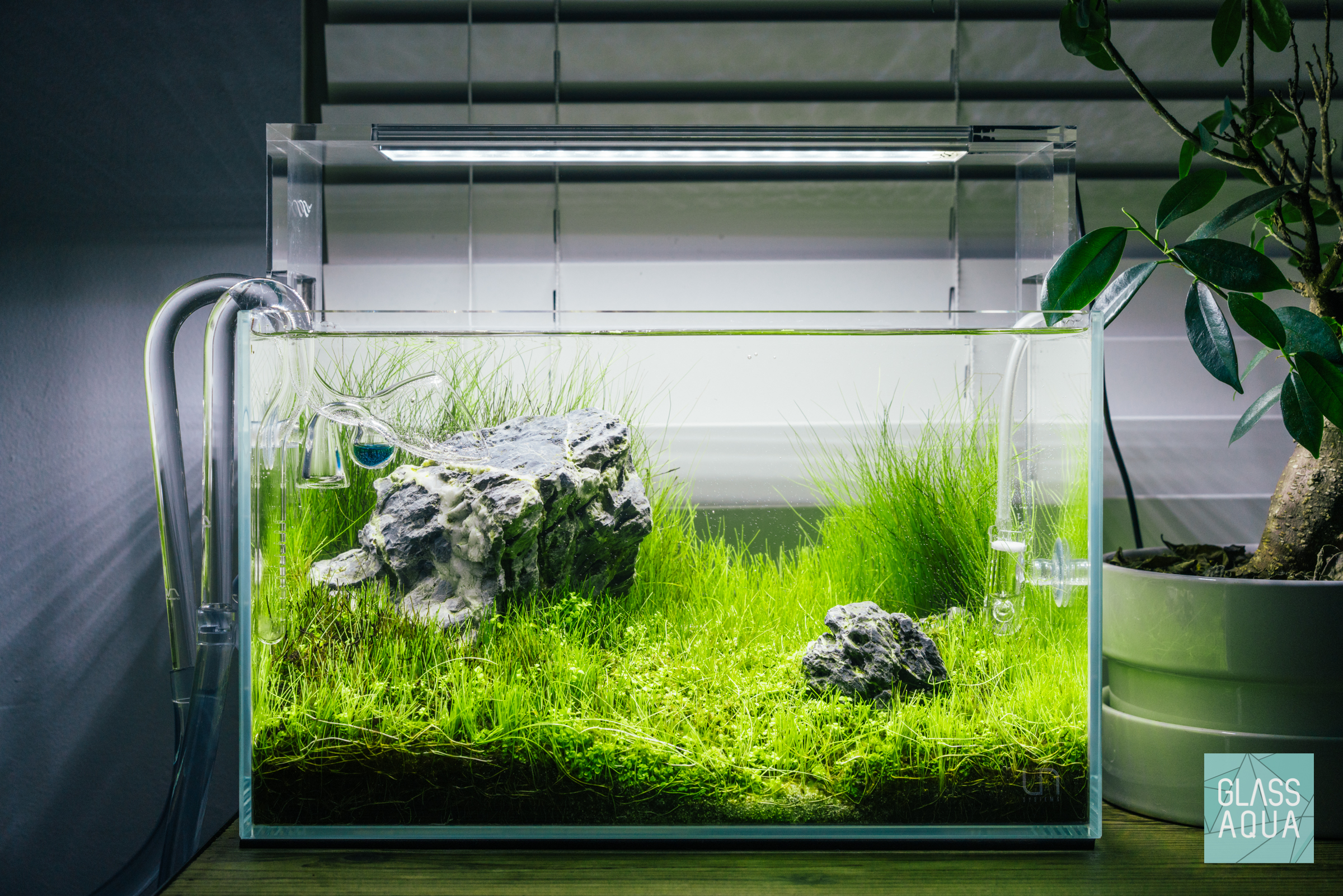 glass aqua planted tank nano glass aqua
