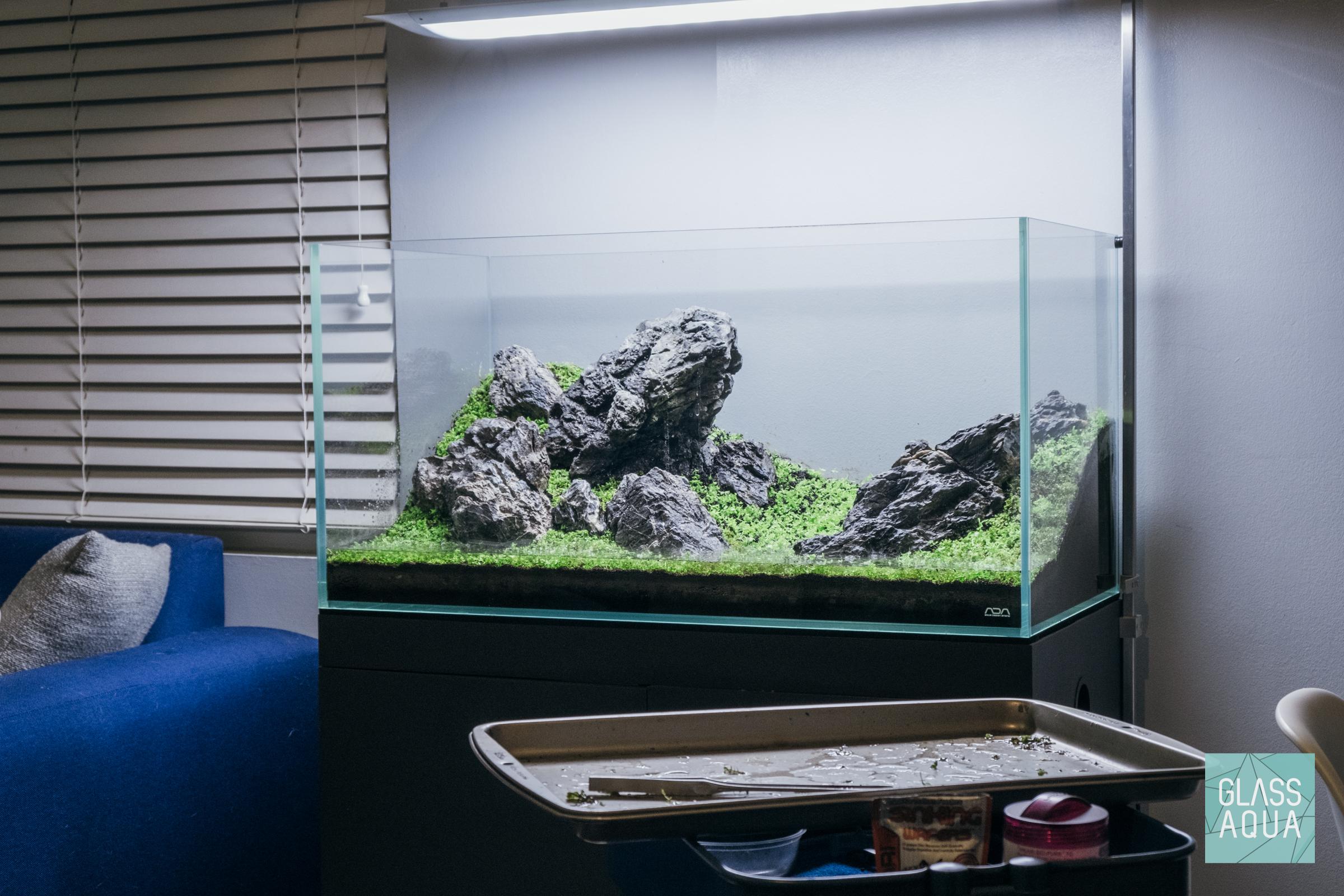 Ada Iwagumi Ryuoh Stone Aquascape Planted Aquarium Tank Glass Aqua