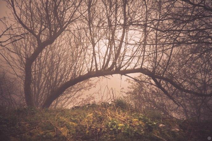 2014-online_0619_goblins-web_001