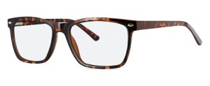 ZP4051 Glasses By