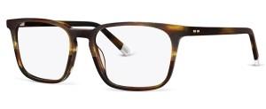 Dorstenia C2 Glasses By ECO CONSCIOUS