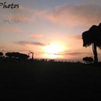 Painted Horizon