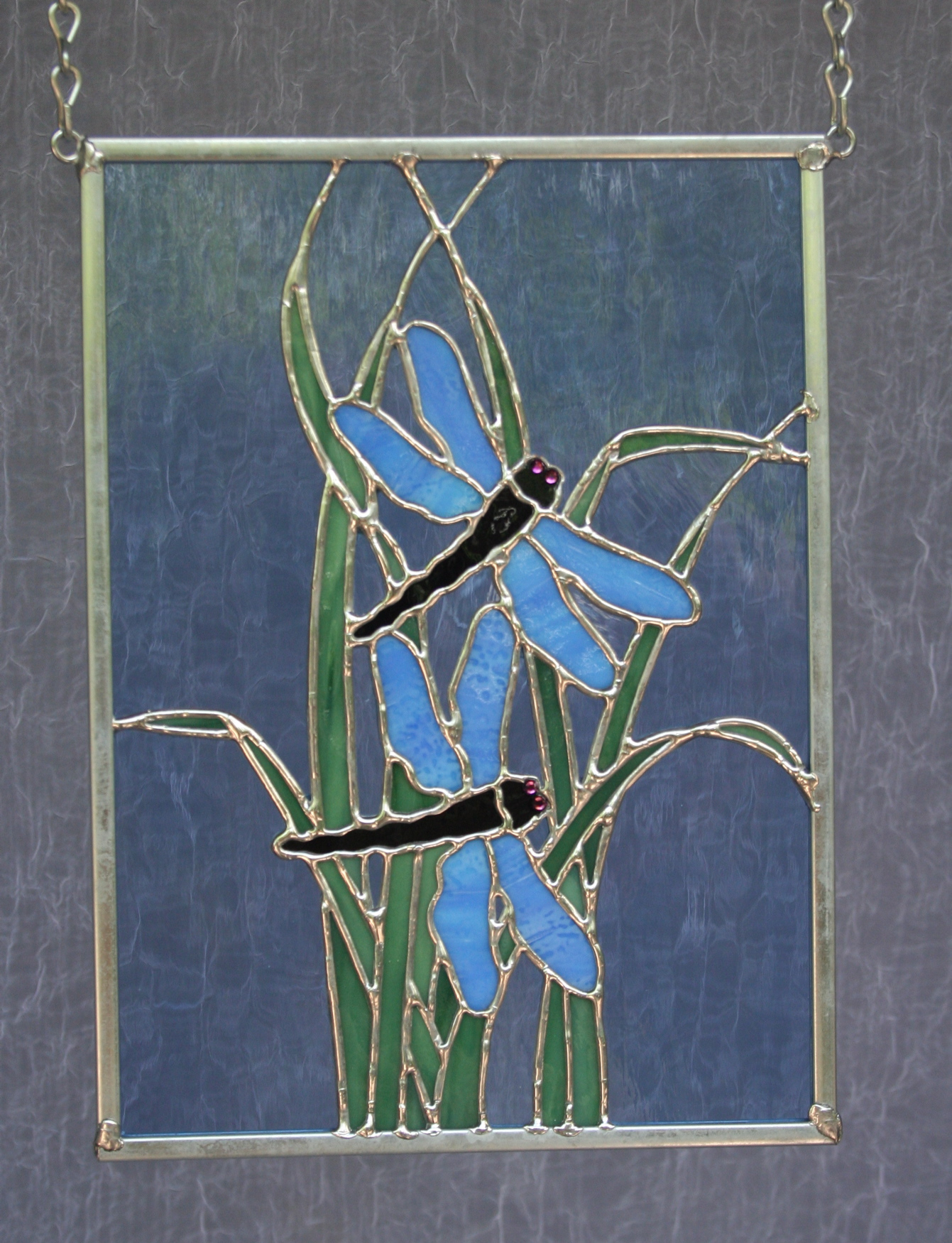 Dragonflies in Grass