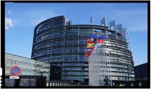 De neimaginat! Rezoluția PE condamnă România pentru referendumul pentru familie!