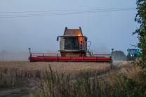 Harvest 2016. Photo: Terry Brignall