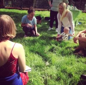 A sit down safari through the grass