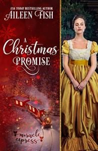 Cover Reveal: A Christmas Promise by Aileen Fish