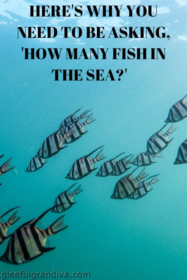 how many fish in the sea picture