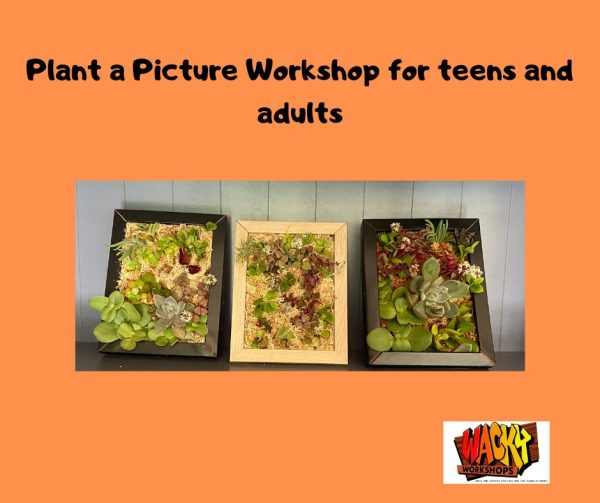 plant a picture picture