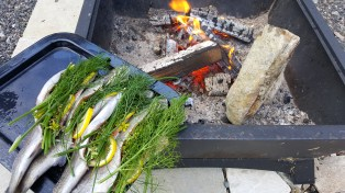 Bbq made with wood collected through the winter.