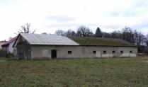 half a green roof1