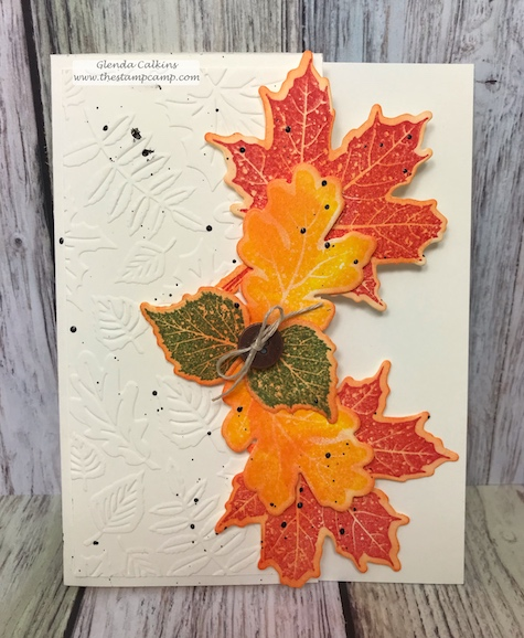 This is a fun fold card using the Hello Fall stamp set and the Changing Seasons embossing folder.  All products are FSJ and can be purchased at thestampcamp.com