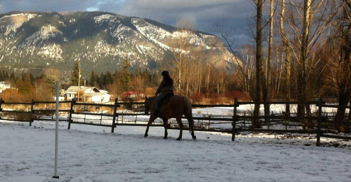 Horse riding in the wintertime at Gleneden Ridge farm.