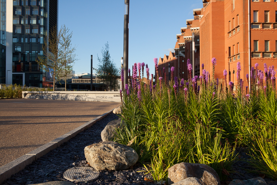 City Landscaping Project - Planting in Flower Bed