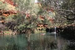Fern Pool. Karijini, Western Australia.