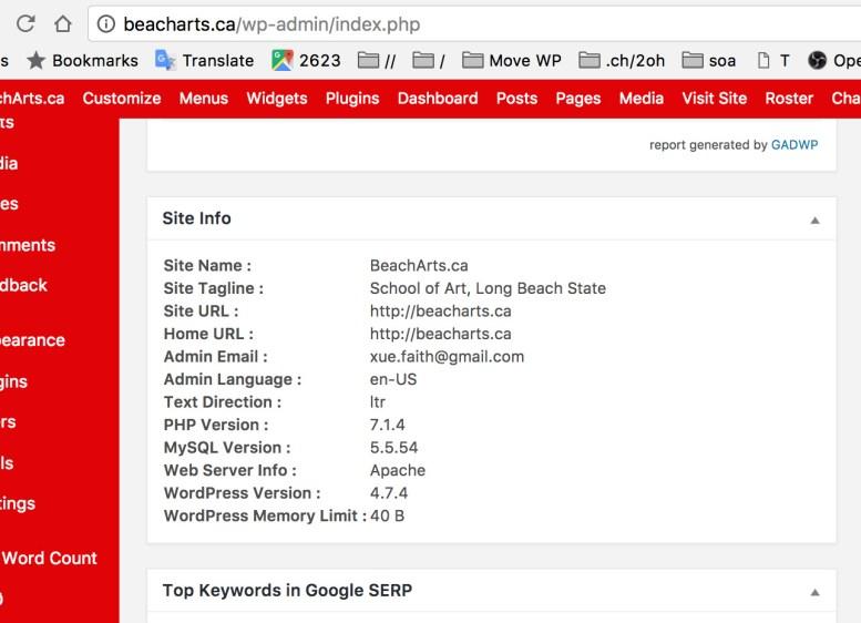 screen cap of Rami Yushuvaev's WordPress dashboard plugin Site Info