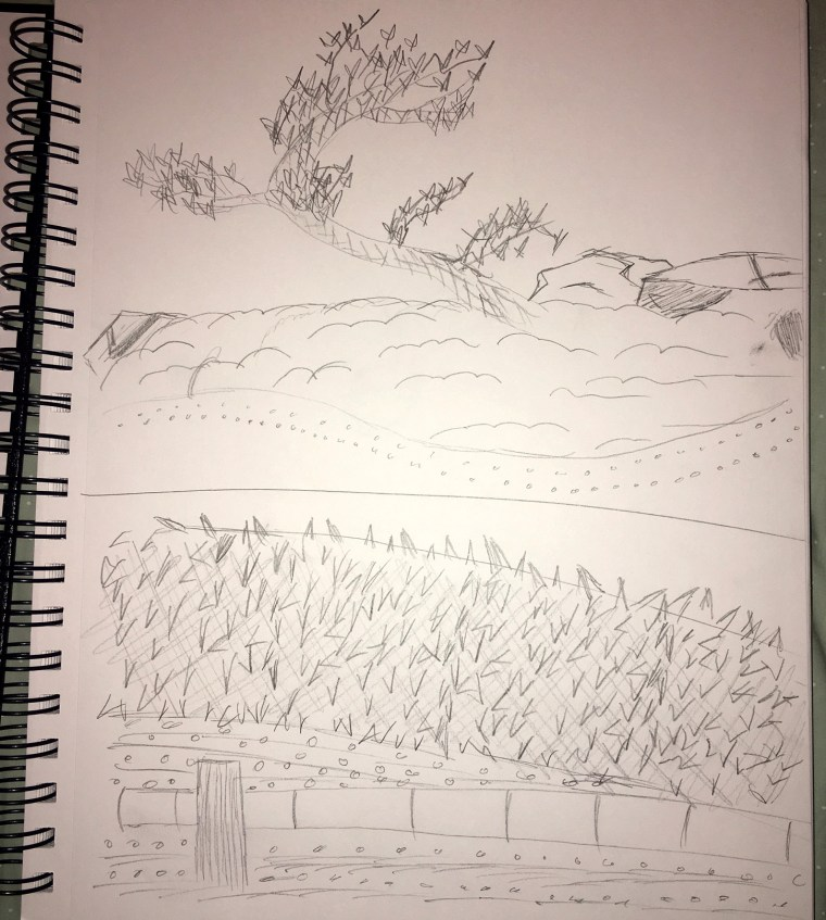 landscape sketches drawn at the CSU Long Beach Japanese Garden by Demi Kong