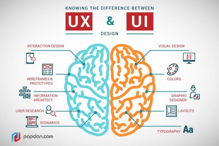 image of a brain divided into UX and UI