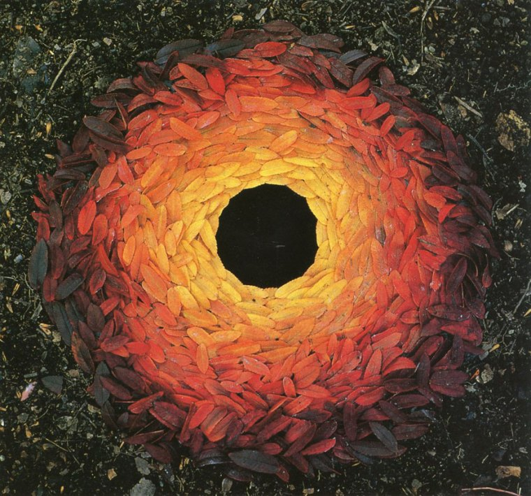 Andy Goldsworthy, Rowan Leaves and Hole. 1987
