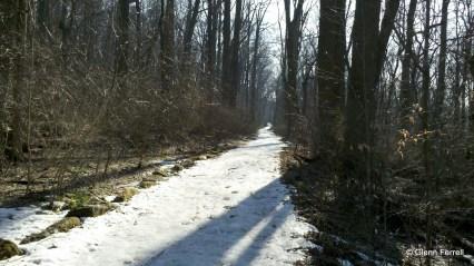 2011-02-18_15-09-14_75
