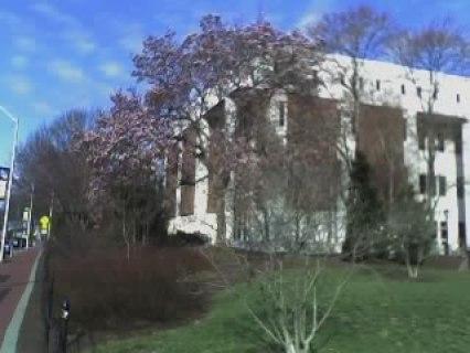 UD Willard Hall, Spring