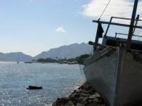 timor-2006-302