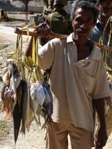 timor-2006-312