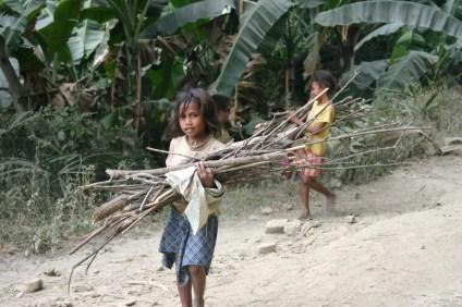 timor-2006-485