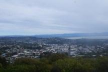 Nelson (centre de la Nouvelle Zélande)