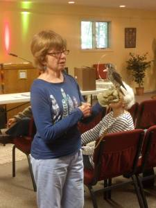 Wildlife Rehabilitator Nancy Kimball and kestrel Cassie.