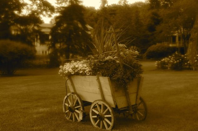 Old Fashioned Flower Cart