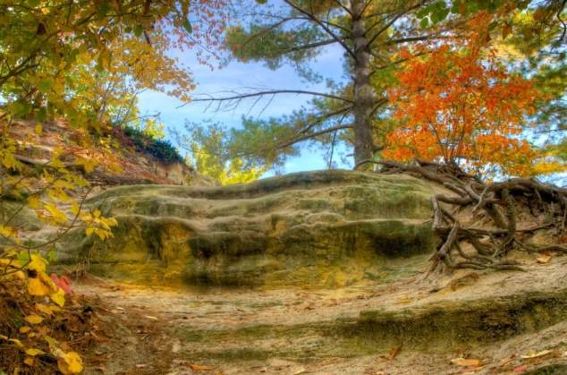 Starved Rock State Autumn Colors