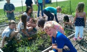 Children garden outreach