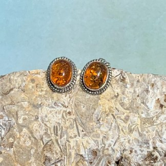 Amber & Sterling Stud Earrings