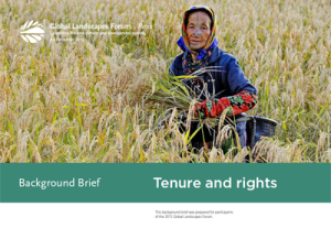 Background Brief – Tenure and rights