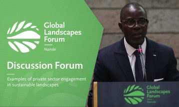 Examples of private sector engagement in sustainable landscapes (Discussion Forum 15)
