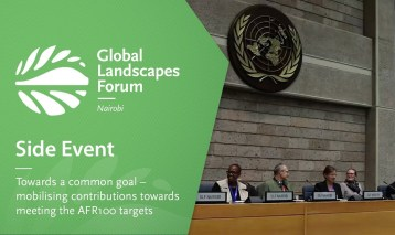 Side Event 2: Towards a common goal – mobilising contributions towards meeting the AFR100 targets