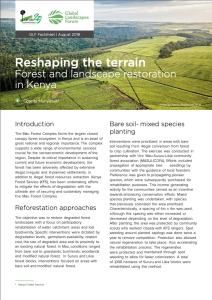Reshaping the terrain: Forest and landscape restoration in Kenya