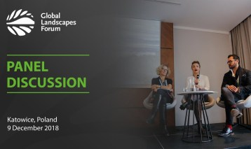 Panel discussion: Implementing the UNFCCC Local Communities and Indigenous Peoples' Platform