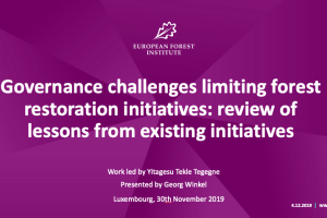 Governance challenges limiting forest restoration initiatives: review of lessons from existing initiatives