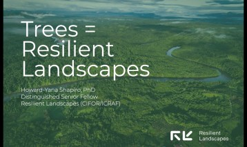 Introducing Resilient Landscapes