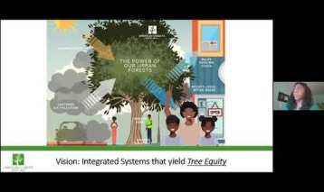 Tree equity – Sarah Lillie Anderson