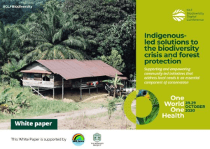 Indigenous-led solutions to the biodiversity crisis and forest protection