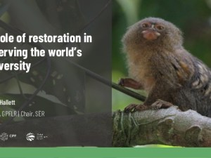 The role that restoration can play in conserving the world's biodiversity