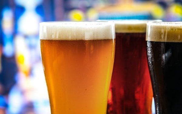 Enslaving Yeast – Extract Beer
